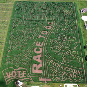 corn-maze-richardsons-farm
